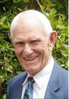 Clarence Freestone, Chiropractor