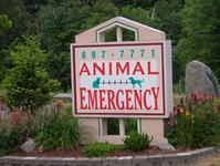 Animal Emergency And Trauma Center