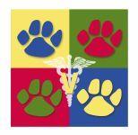 Four Paws Animal Hospital