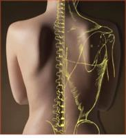 Irondequoit Chiropractic Center