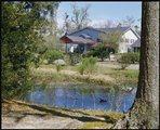 Marsh View Senior Living