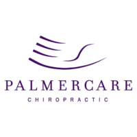 Palmercare Chiropractic McLean