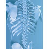 Urteaga Chiropractic & Sports Medicine