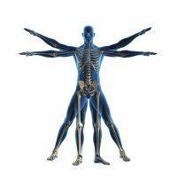 Old Bridge Spine and Wellness Center