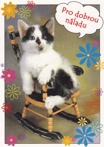 PostCrossing Received from Czechia - Esther Neela Blog
