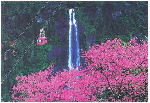 Hot springs and cherry blossoms in Wulai; Taiwan.