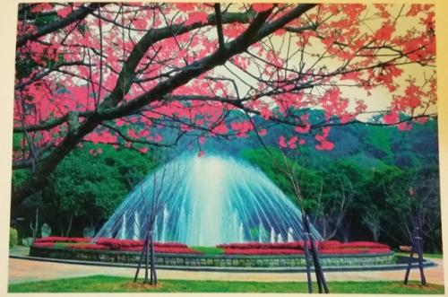 PostCrossing Received from Taiwan - Esther Neela Blog
