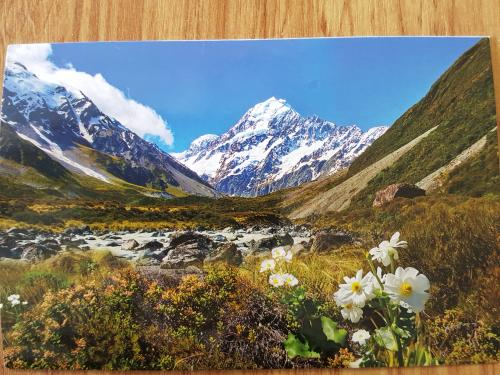 PostCrossing Received from New Zealand - Esther Neela Blog