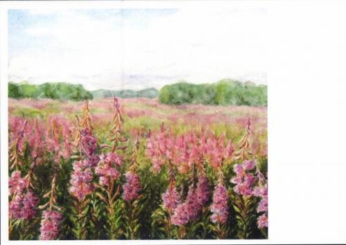 Красивые полевые цветы  цветы живопись маслом и мастихином