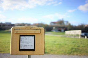 browntrout's mailbox