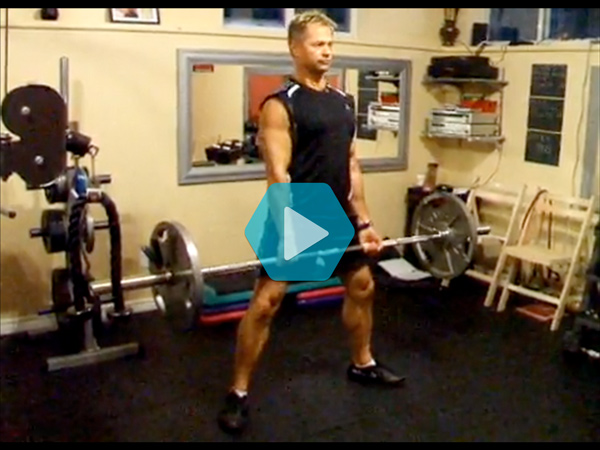 Exercise Ideas and Demonstration Videos | Precision Nutrition