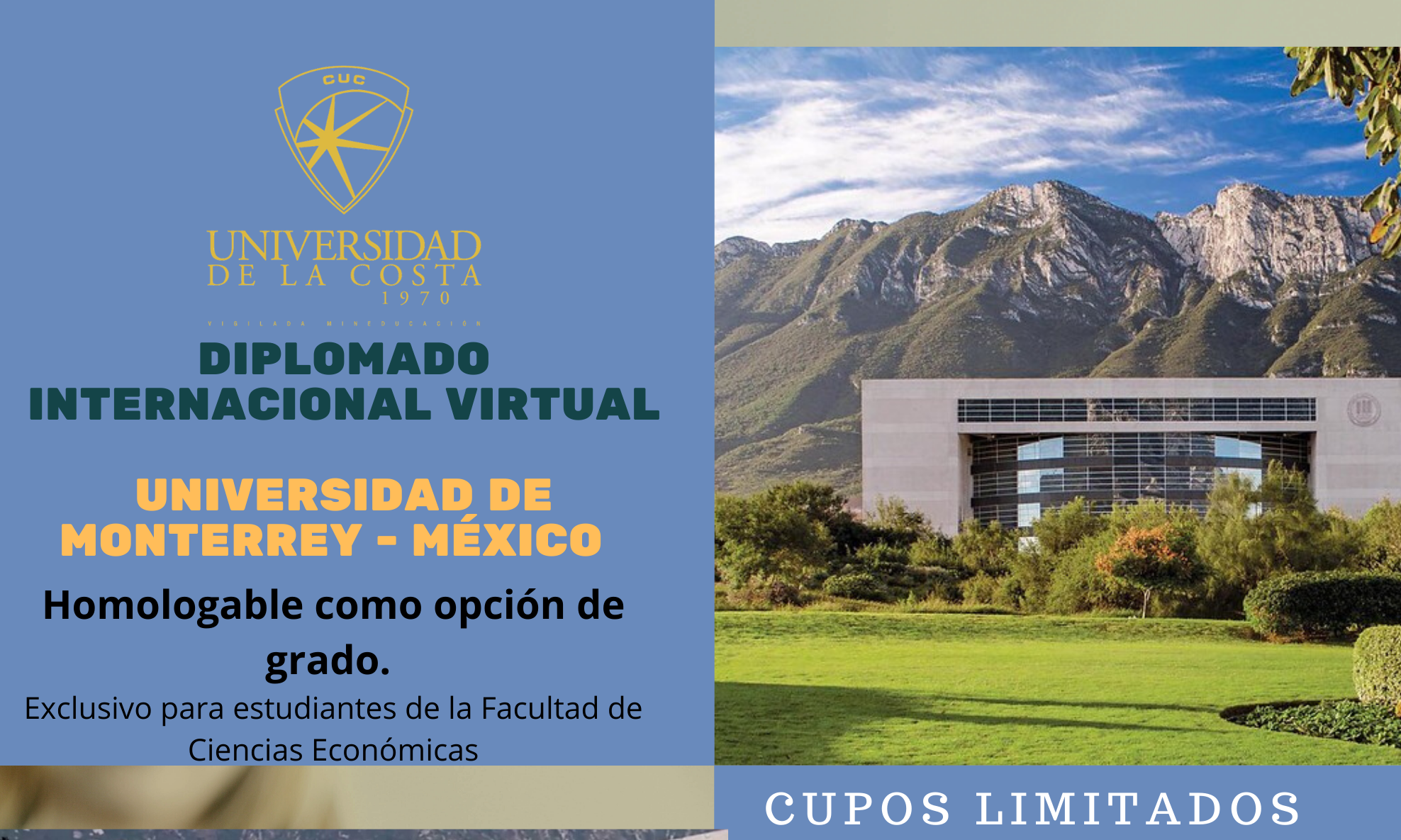 Diplomado internacional virtual en la Universidad de Monterrey