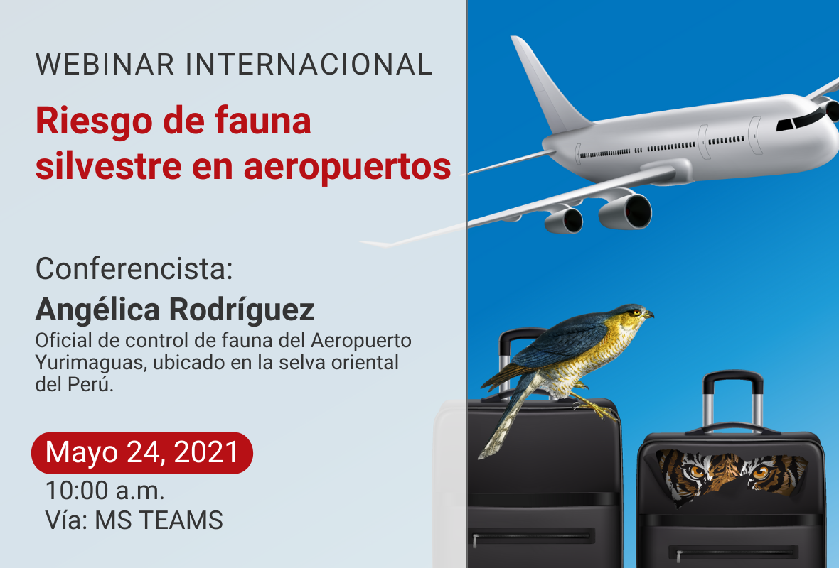 """Webinar Internacional """" Riesgo de fauna silvestre en aeropuertos"""""""