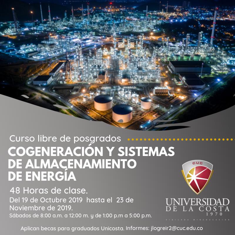 Cogeneración y sistemas de almacenamiento de energía