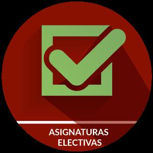 Asignaturas electivas