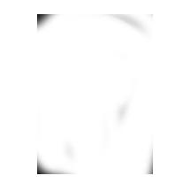 ubicacion white icon