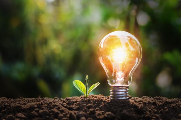 bombilla pequena planta suelo sol concepto ahorro energia naturaleza 34152 1352