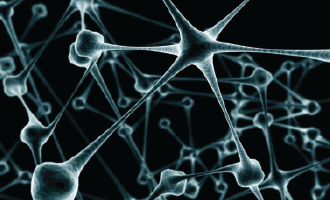 Consumer Neurosciences, Behavioral Economy and Business Forecasting