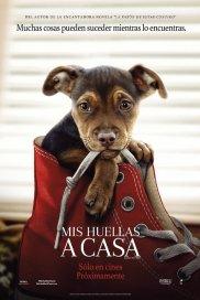Poster de:2 Mis Huellas A Casa