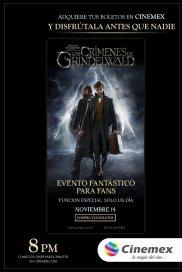 Poster de:1 Animales Fantásticos: Los Crímenes de Grindelwald