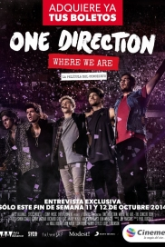 One Direction Concierto