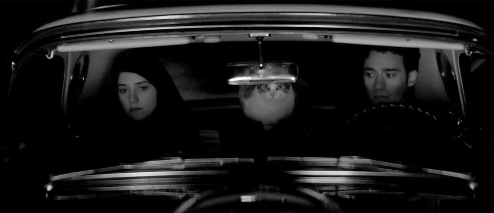 Stefan's Head - At The Movies With Stefan - A Girl Walks Home Alone At Night Trailer