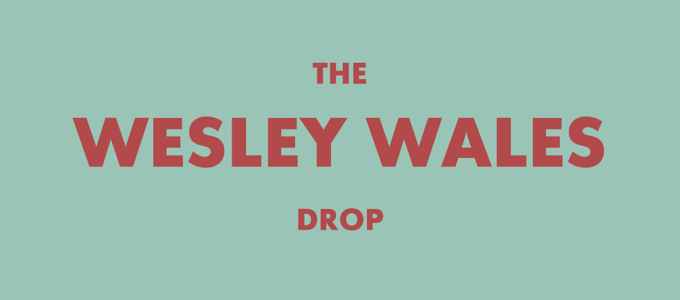 Stefan's Head - The Wesley Wales Drop
