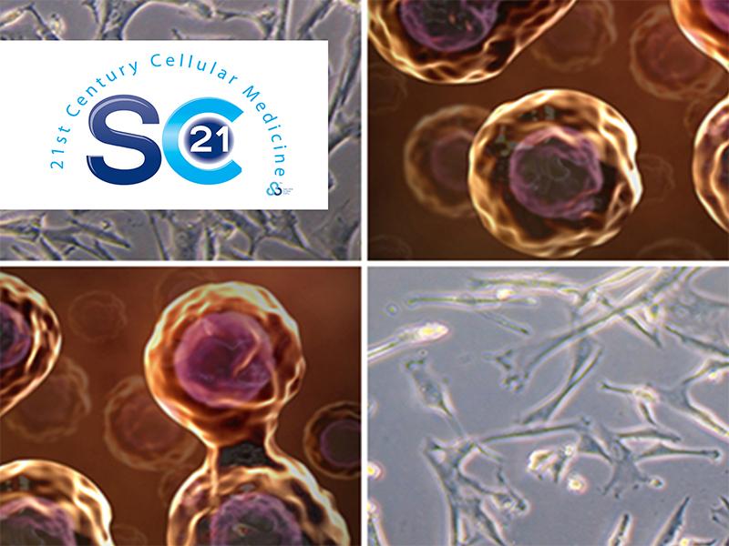 adipose stem cells treatment