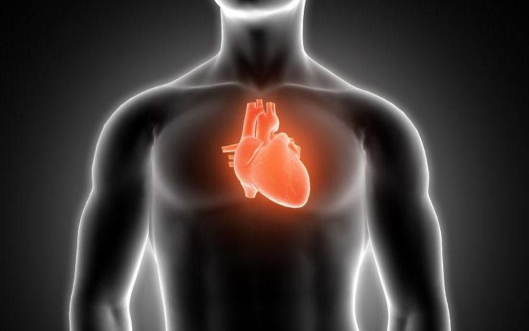 Heart Disease Treatment Innovation Adult Stem Cell