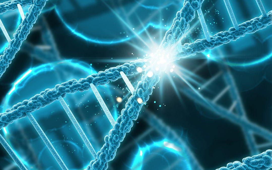 Stem Cells Research: CRISPR Genome Activation