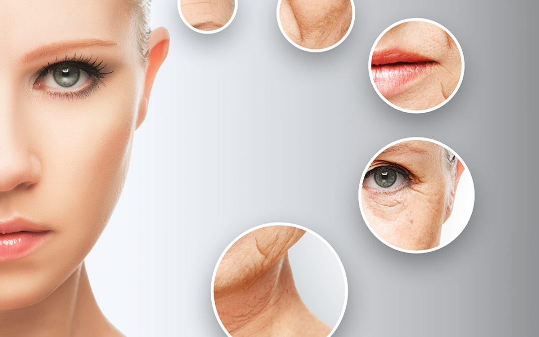 Anti-aging Skincare Products with Stem Cells