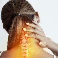 Orthopedic Spine