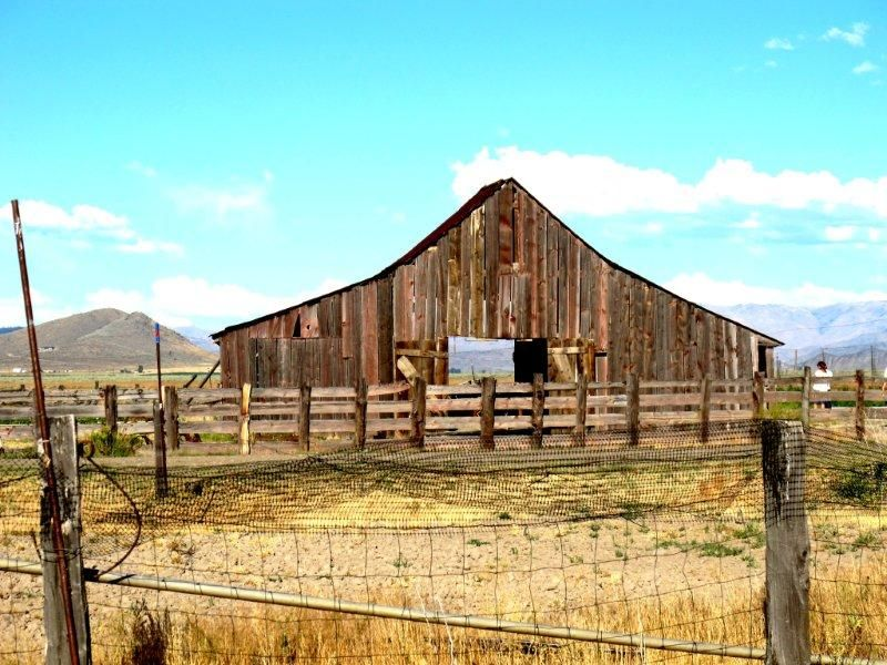 Sierra Valley Farm