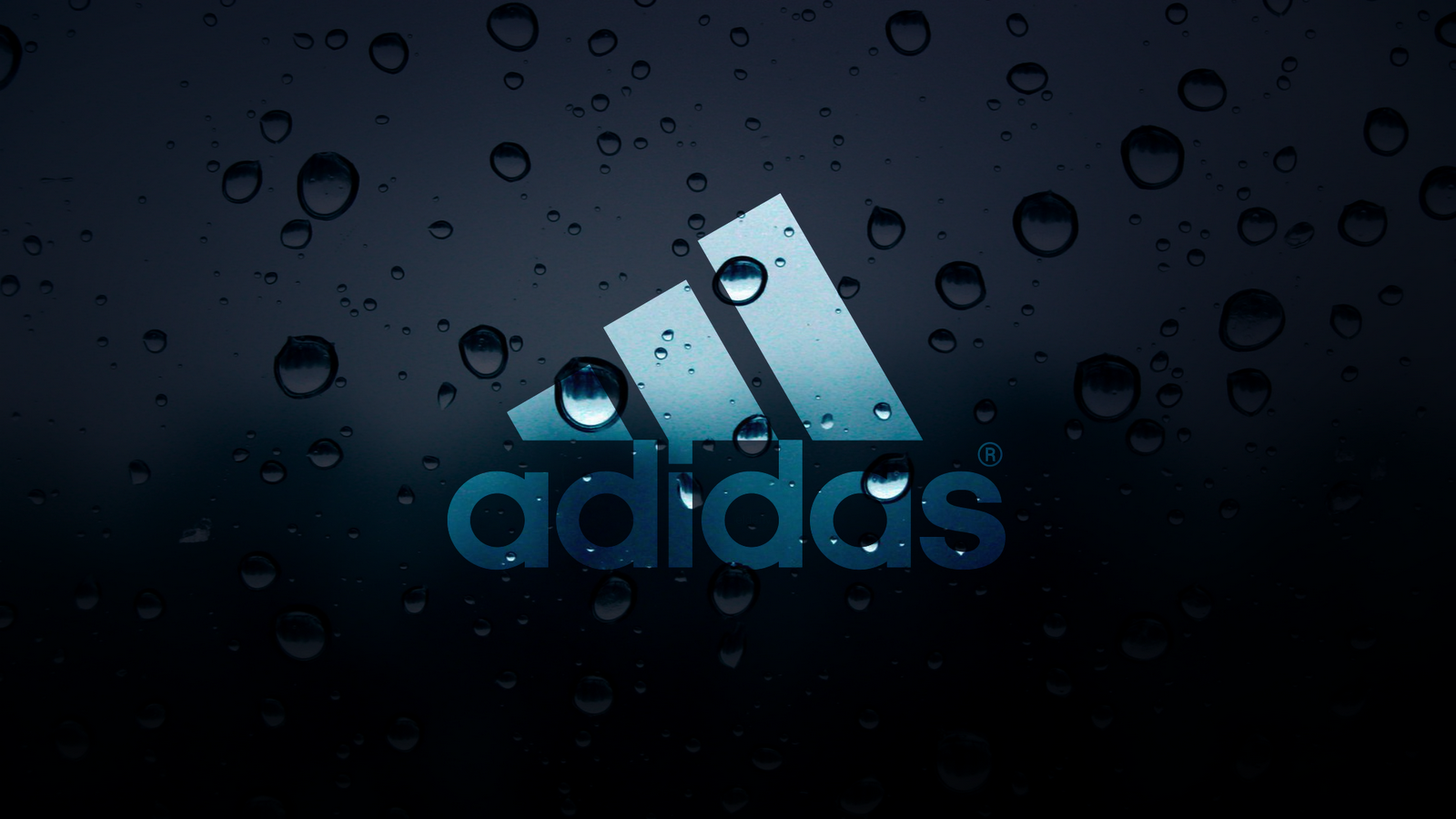 Associated Press Fashion Reporter – Finds Adidas Jacket….