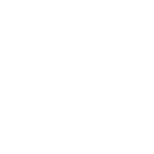 Vision Fly Fishing logo