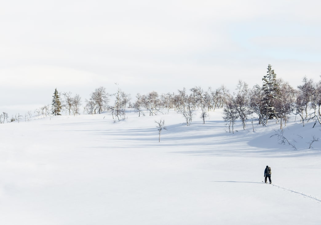 Cross-Country Skiing 101: What to Know, What to Wear, Where to Go