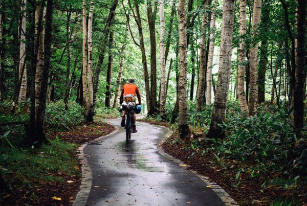 20190213-bikepacking