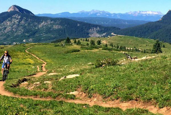 20190718-Colorado-Colorado Trail