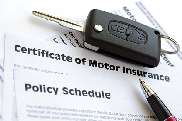 mydriverlicenses.org blog: Instances When You Should File a Car Insurance Claim: Suggestions From MyDriverLicenses.org