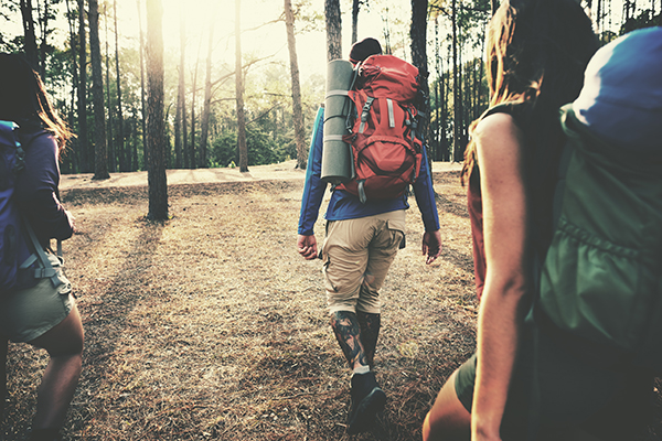 travelprecheck.org blog: How to Stay Fit While Traveling: Suggestions From TravelPrecheck.org