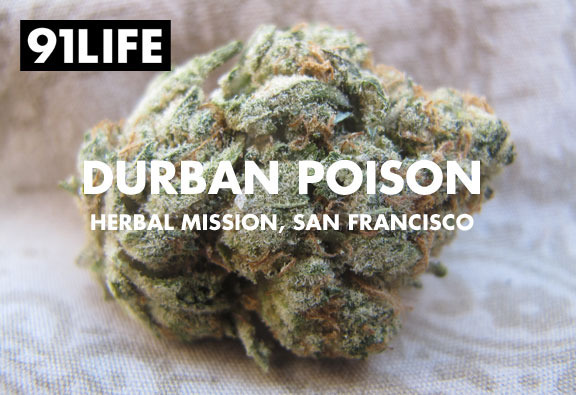 91life_durban-poison_herbal-mission