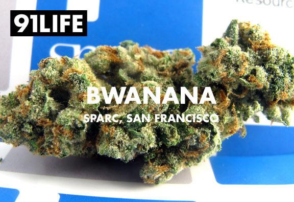 91life_bwanana_sparc_san-francisco