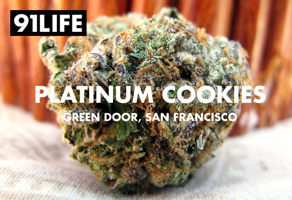 91life_platinum-cookies_green-door