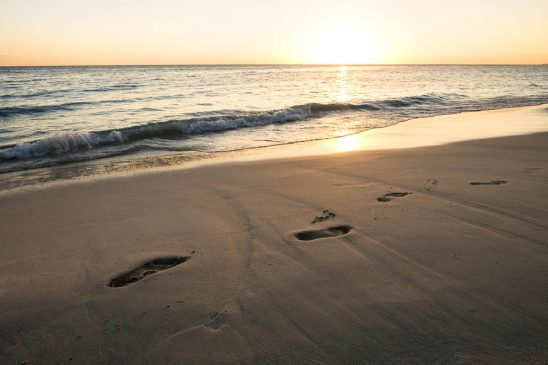 Free stock photo High angle view of footprints on wet sand by beach during sunset