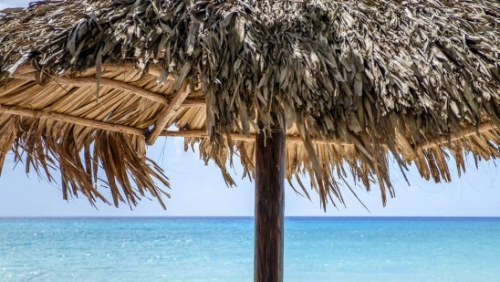Free stock photo Thatched sunshade against sea