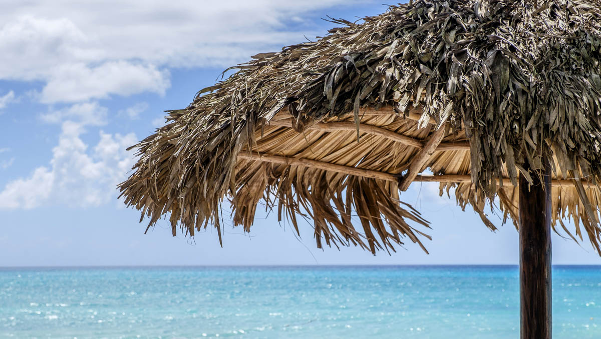 Free stock photo Thatched sunshade at beach against sky
