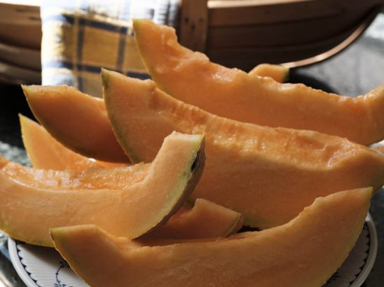 Free stock photo Close-up of cantaloupe slices on plate