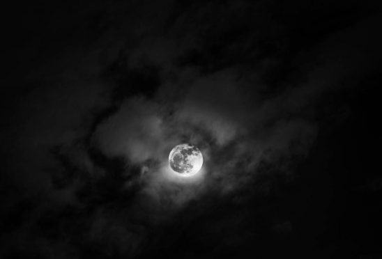 Free stock photo Scenic view of full moon in sky at night