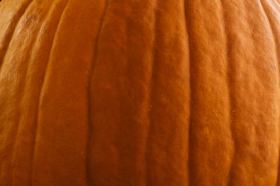 Free stock photo Close-up of pumpkin