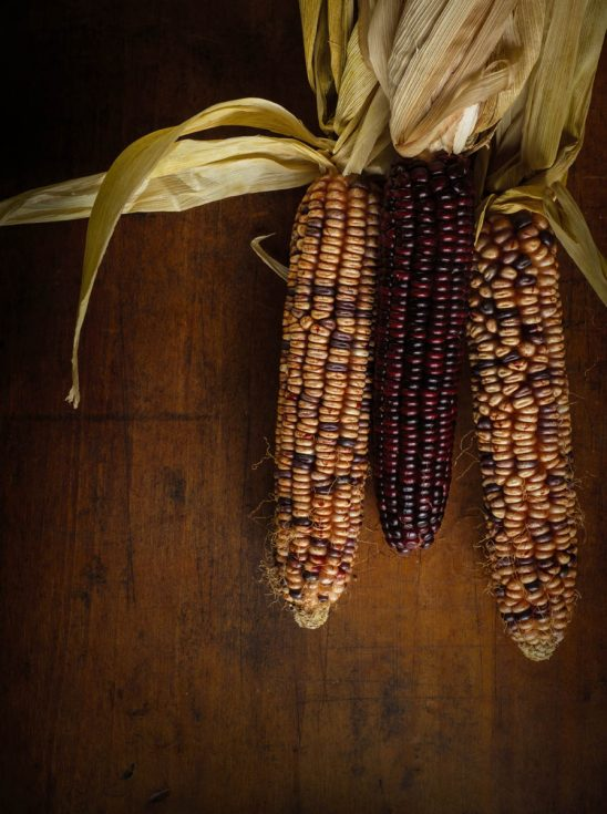 Free stock photo High angle view of multi colored corncobs on wooden table